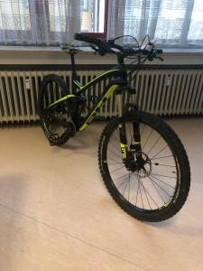 Herren Fahrrad LYNX 4,8 Carbon